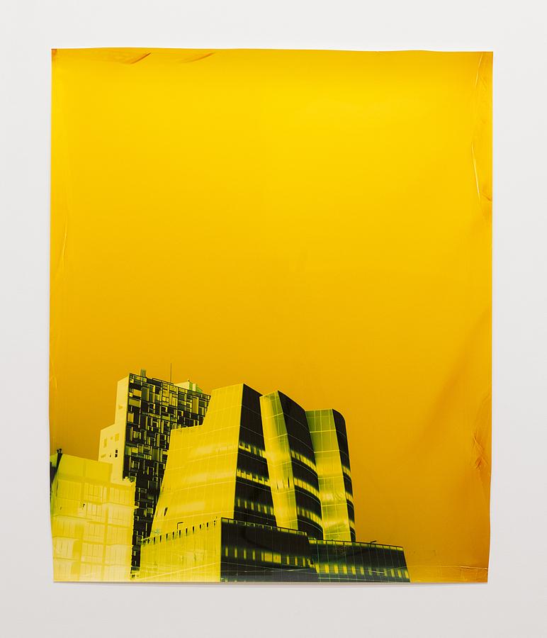 "Negative Chromogenic Photograph, 38 1/2"" x 32 1/2 in, Unique, Armory Show 2016, Photo courtesy of Yossi MiloGallery"